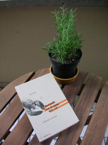 090817_Paulsenbuch