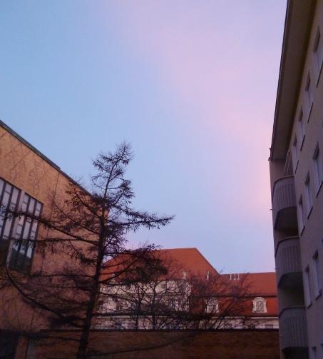 121231_Morgenrosa