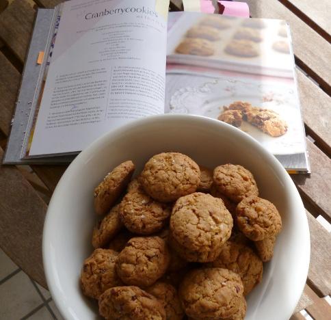 130308_Cranberrycookies_4