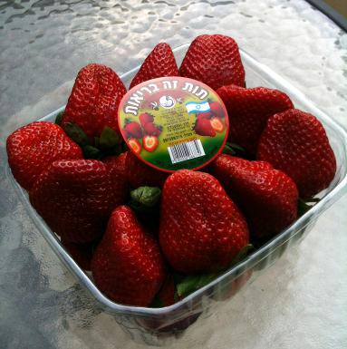 140105_Erdbeeren_Insta_2