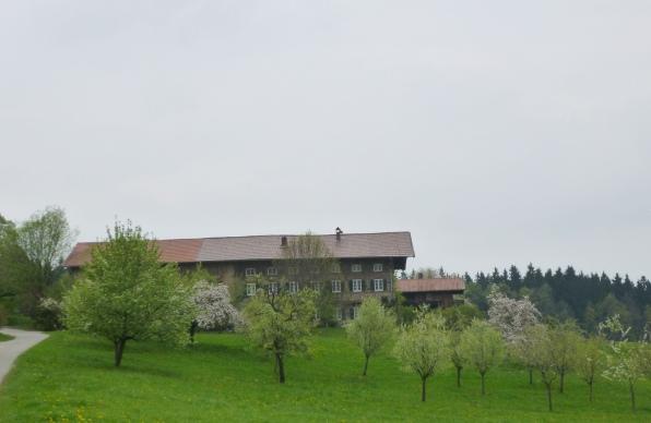 140413_32_Obstweg_Dirnsberg