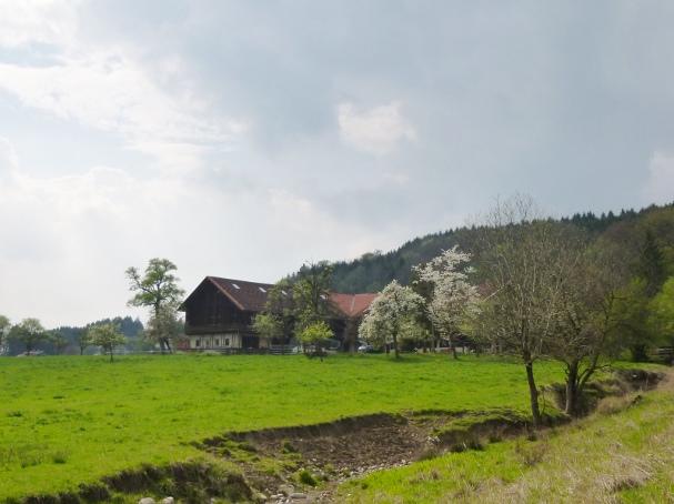140413_86_Obstweg_Bach