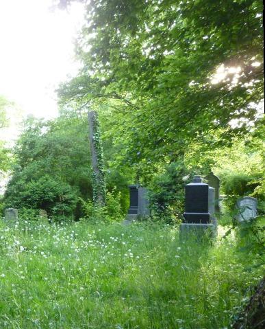 140520_Südfriedhof_3