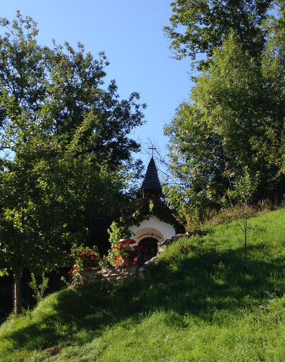 150829_52_Ratzinger_Höhe