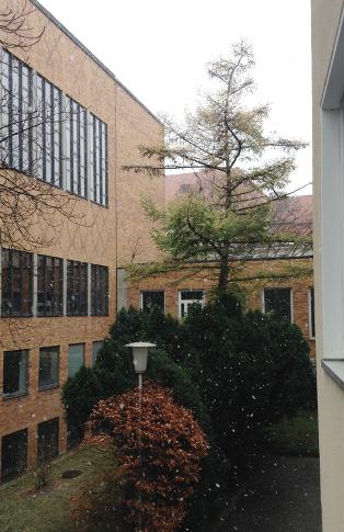 151128_02_Balkonaussicht_Schnee