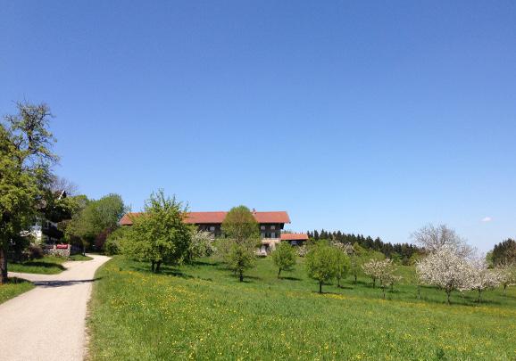 160507_25_Dirnsberg