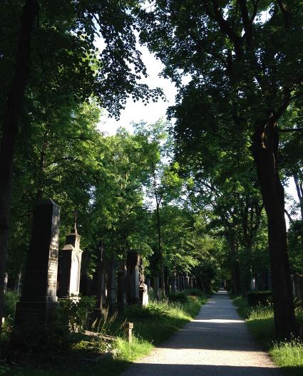 160607_01_Suedfriedhof