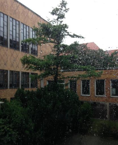 160625_08_Regen