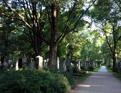 160808_03_Suedfriedhof