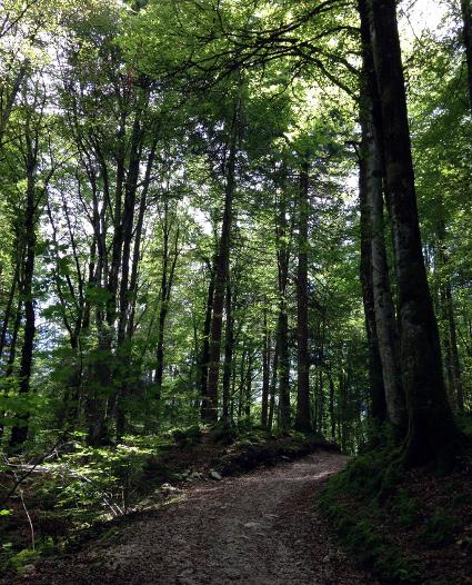160820_61_Garmisch_Wandern