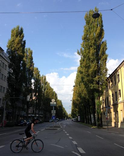 160828_03_Lindwurmstr