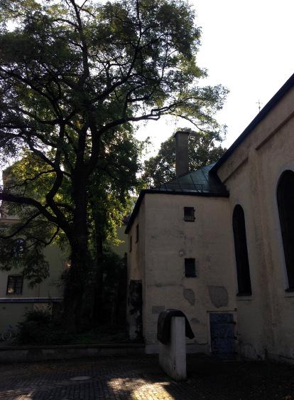 160902_01_Suedfriedhof