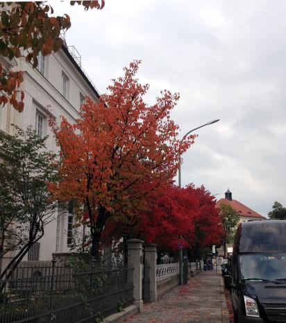 161010_01_herbst