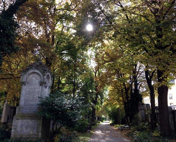 161020_08_suedfriedhof